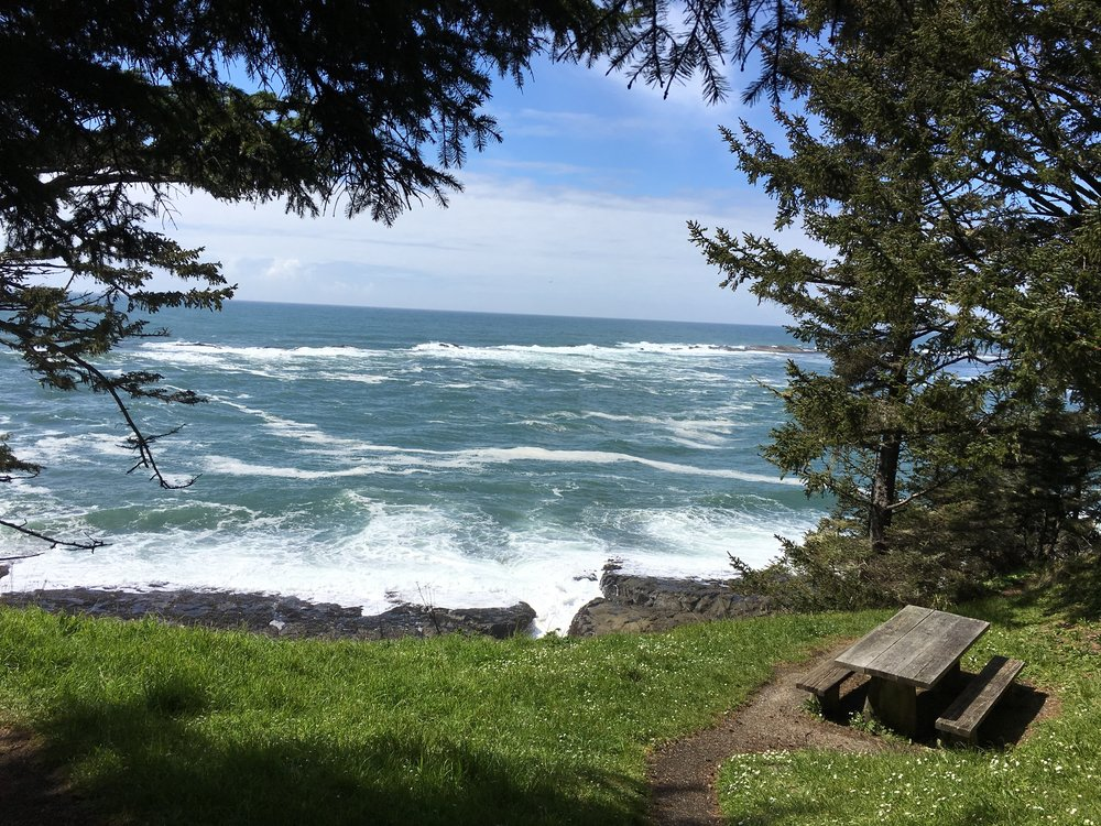 The perfect picnic spot on Cape Arago, unless the fact that theres no safety barrier bothers you.