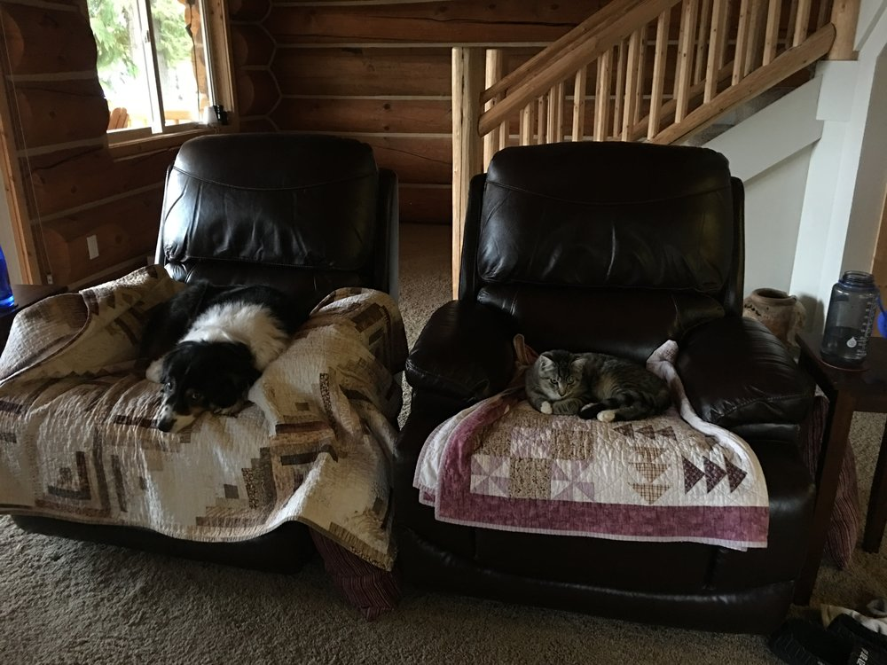 We got rid of the sofa that came with the house. The love seat hadn't been delivered yet, so the recliners were the only comfy seats in the house. Well, besides the three dog beds!