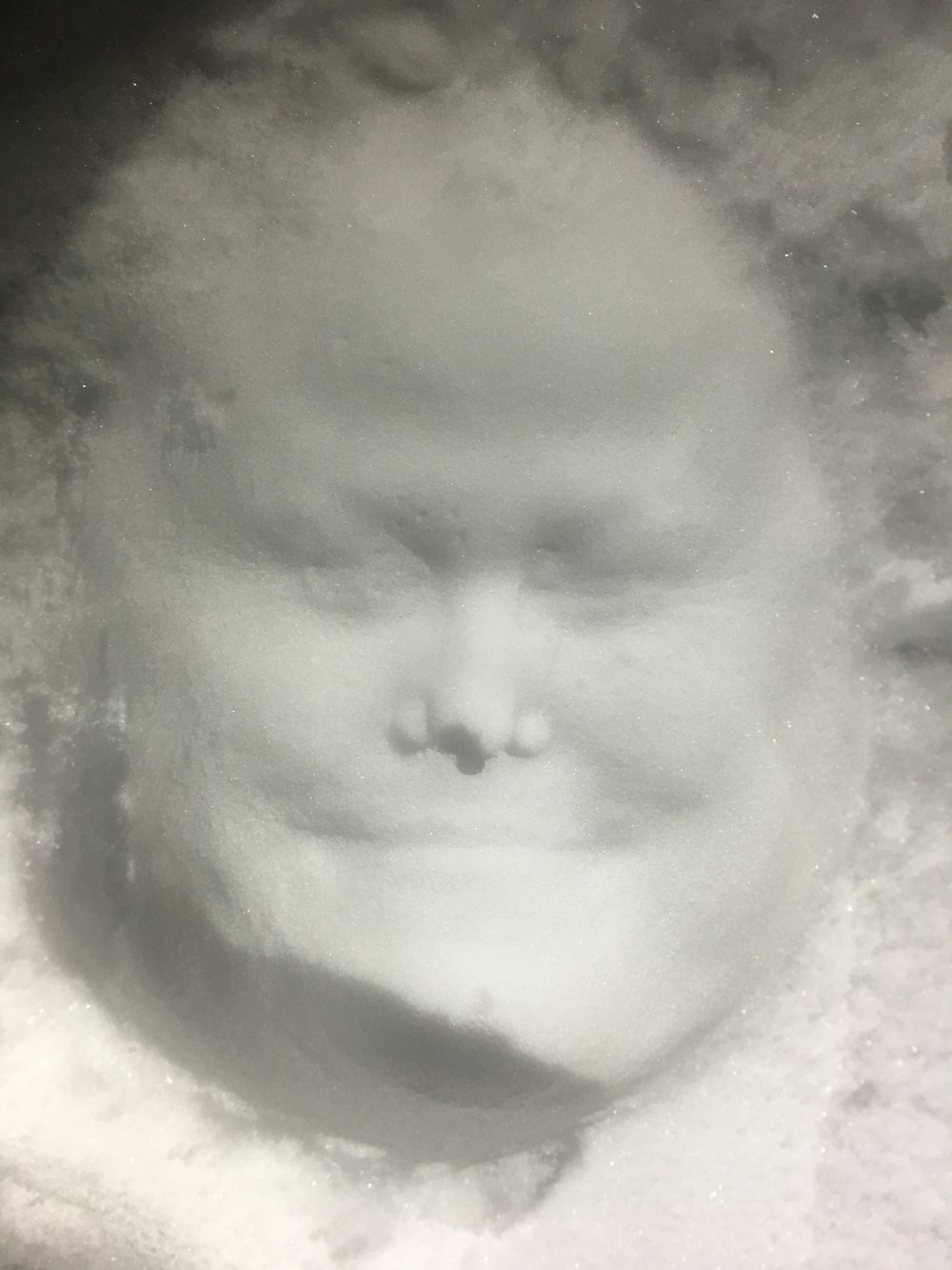 At a Christmas party, I pressed my face in the snow and used a light to make this 3D looking imprint of my face. All the cool kids were doing it!