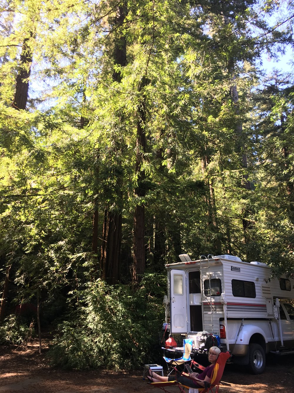 The truck camper nestled into the trees at Samuel P. Taylor State Park.