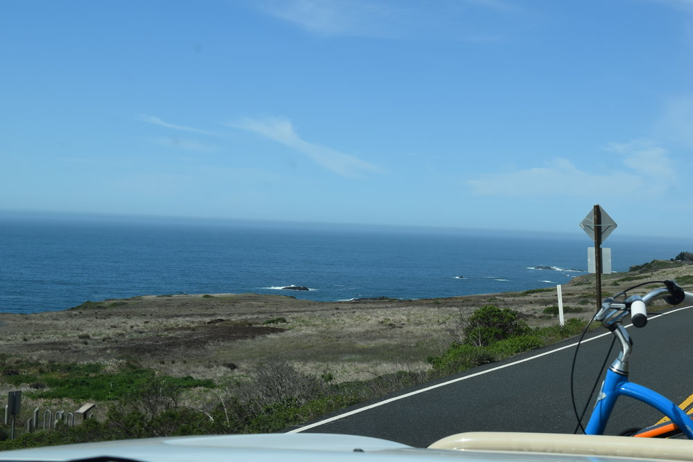 Back at the Pacific Ocean. Near Albion, CA.