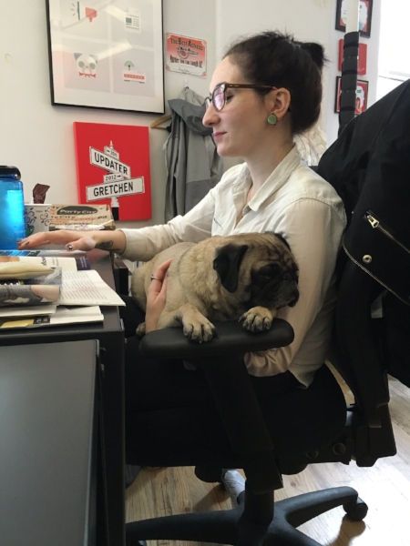 dog-updater_crains-best-places-to-work-nyc