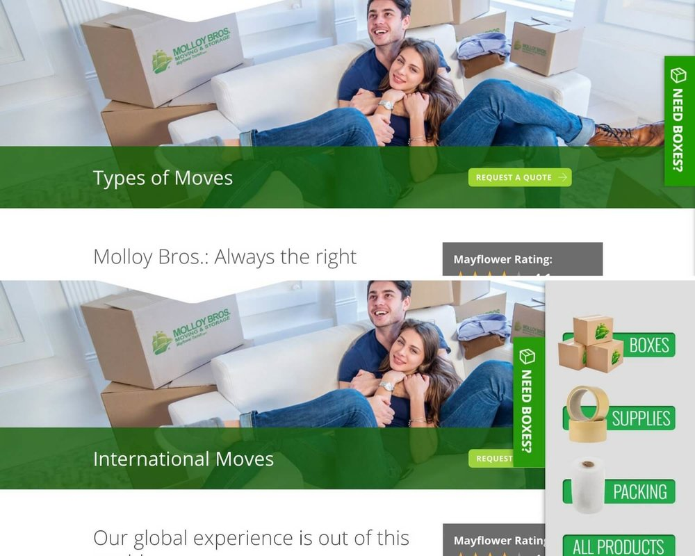 molloy bros - top moving company website design