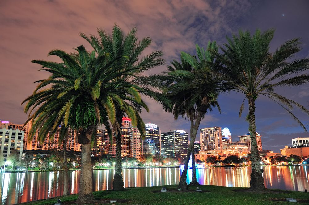 orlando at night - moving trends