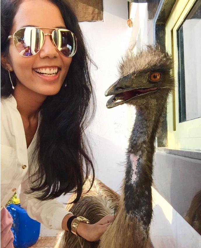 yamini emu - meet updater yamini kumawat