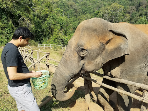 ankit-with-elephant_meet-updater-ankit-shah.png