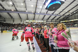 The Elmira Jackals held their 2nd annual Pink in the Rink game on March 28, 2015.