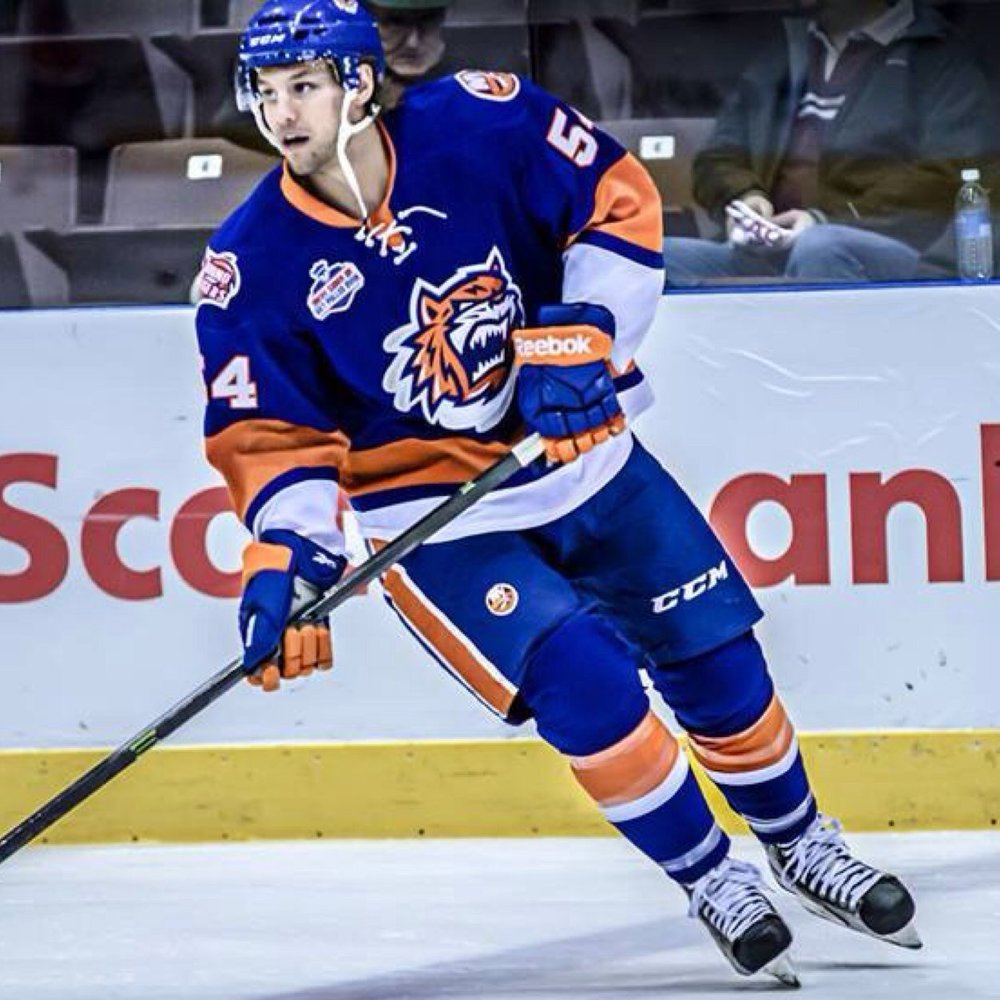 Langkow recorded 36 points over the past two seasons with the Bridgeport Sound Tigers.