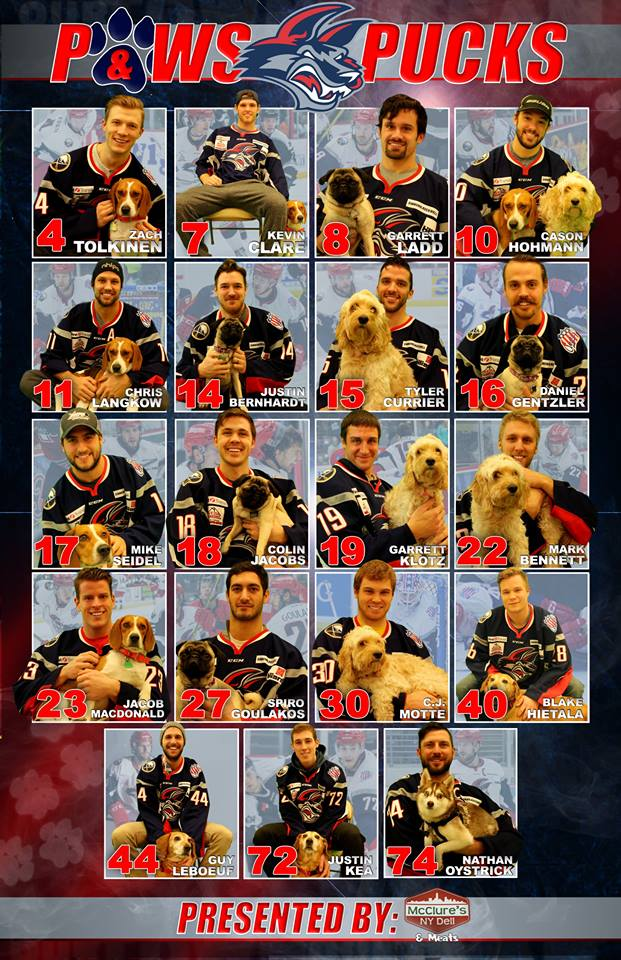 Paws and Pucks Poster created by Elmira Jackals Art Director, Danielle Alred