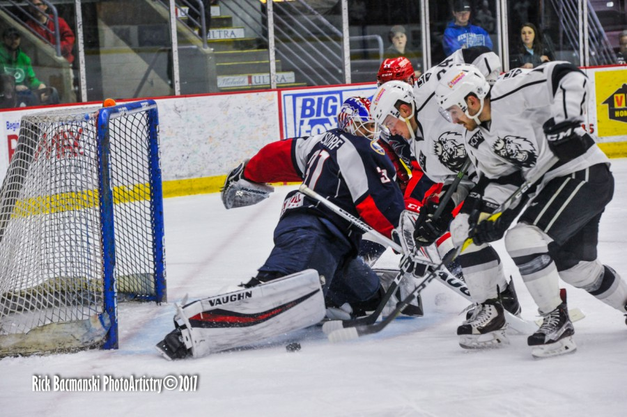 GAME PREVIEW: Jackals Aim To Continue Success Over Monarchs
