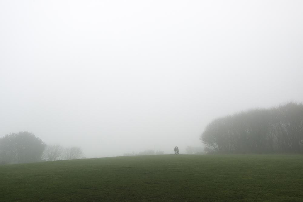 fogwalkingweb.jpg