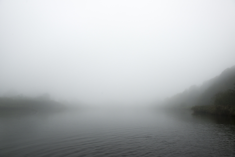 foglakeweb.jpg
