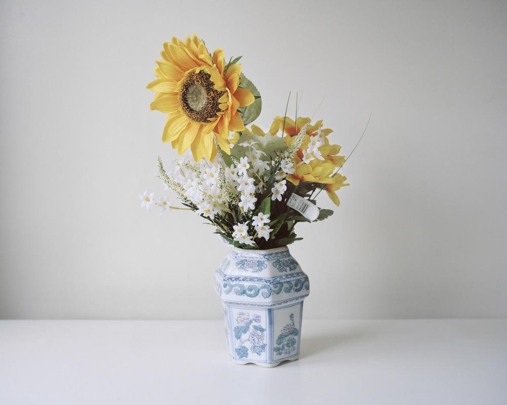 160316plasticflowers7.jpg