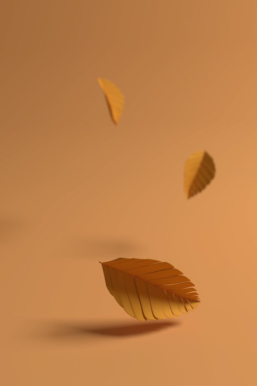 Falling leaves website.jpg