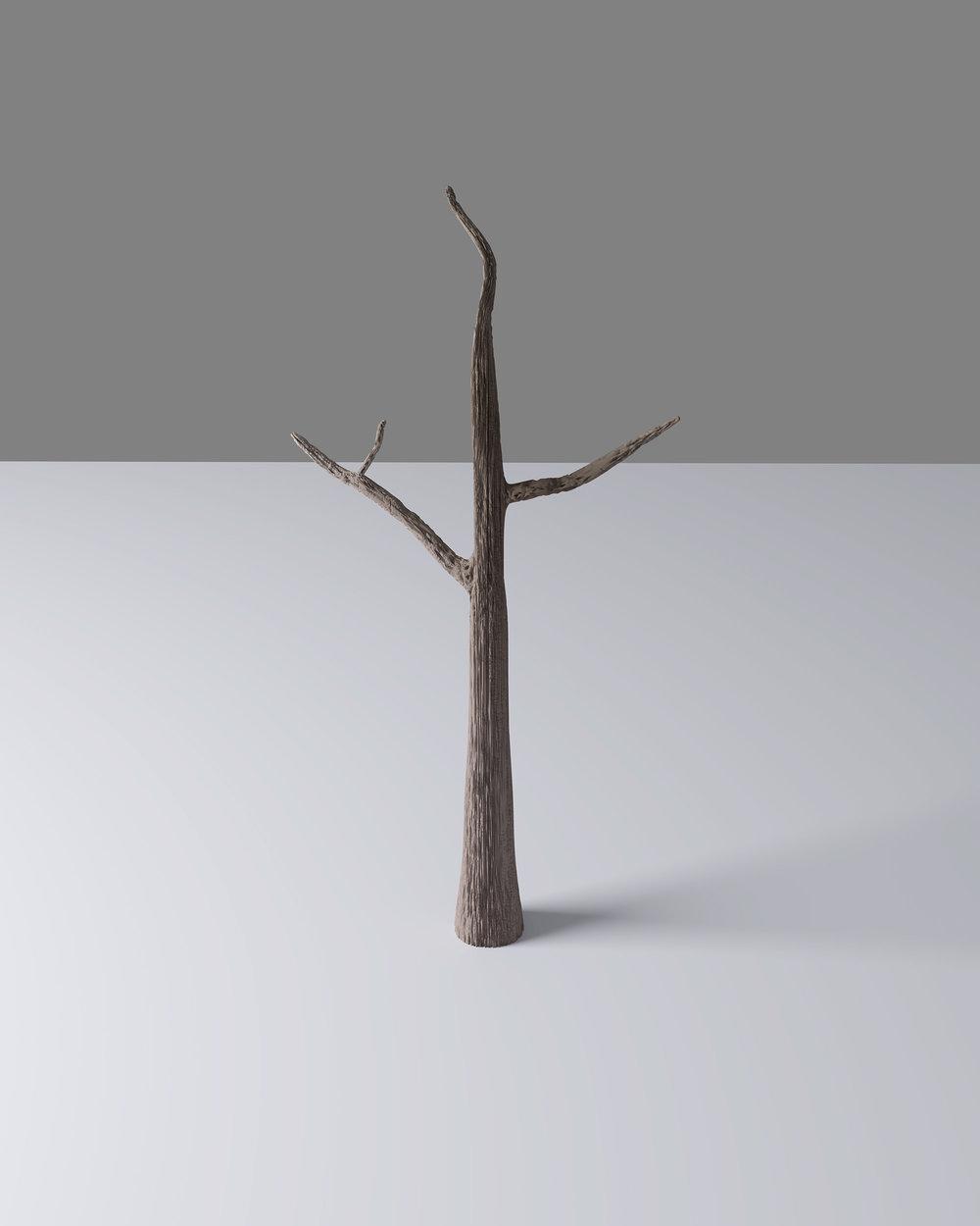 tree website.jpg
