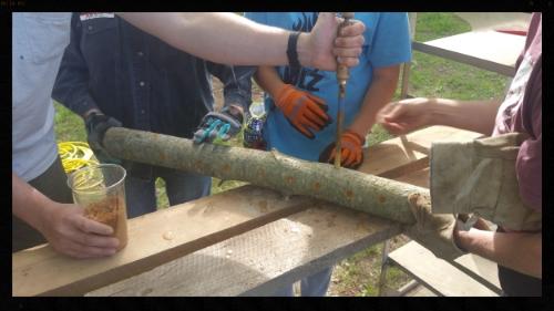 Our workshop attendees hard at work inoculating mushroom logs