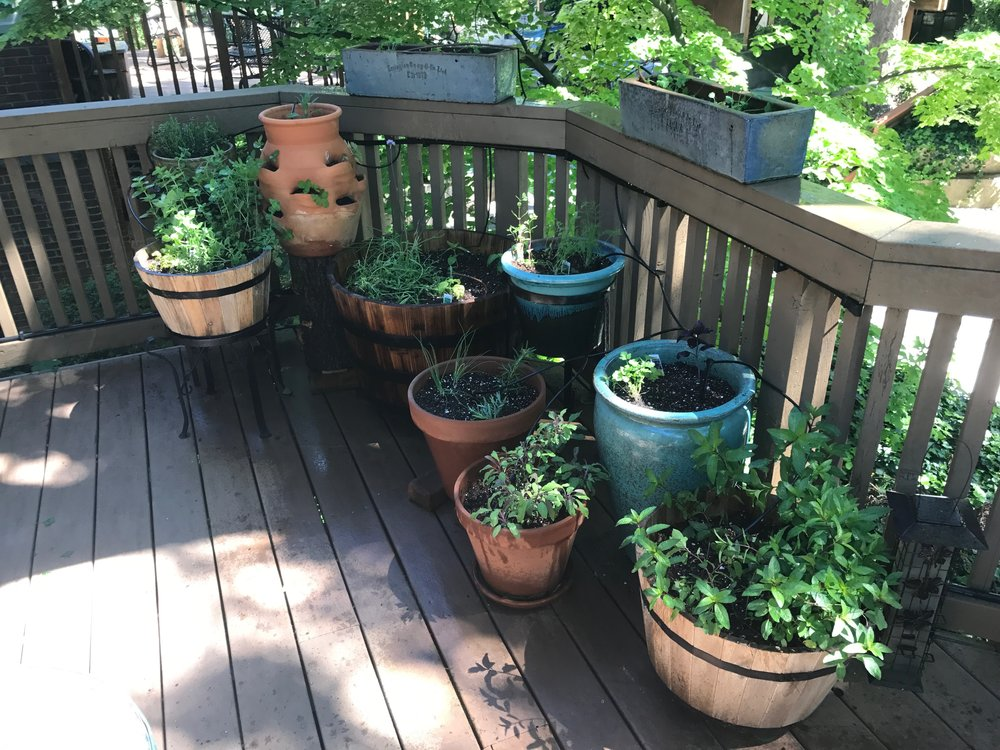 Peek's Porch Garden