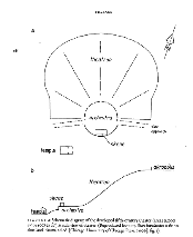 Schematic diagram of fifth-century theat