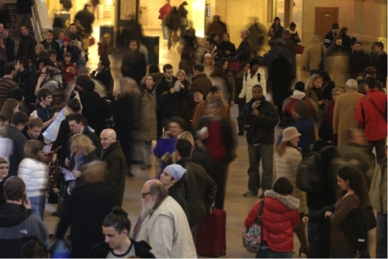 Fig. 30. Improve Everywhere. Frozen Grand Central. 2007. Final Gear. 31 January 2015.
