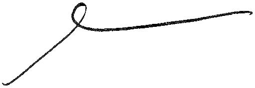 GS signature.jpg