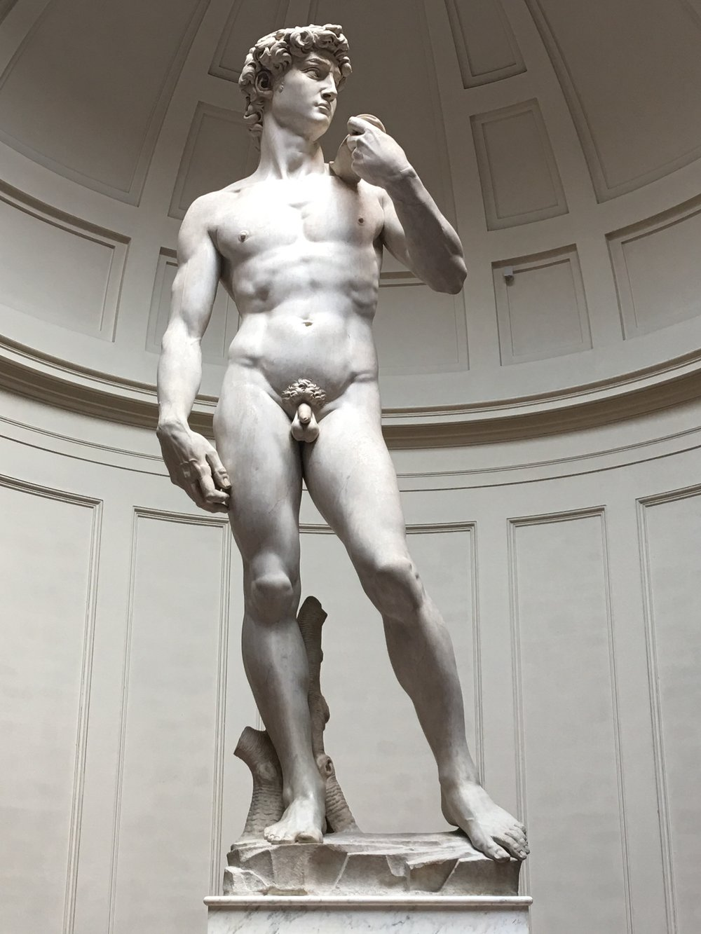 Michelangelo's David at the Galleria dell'Accademia. Photo by Kate Lenahan.