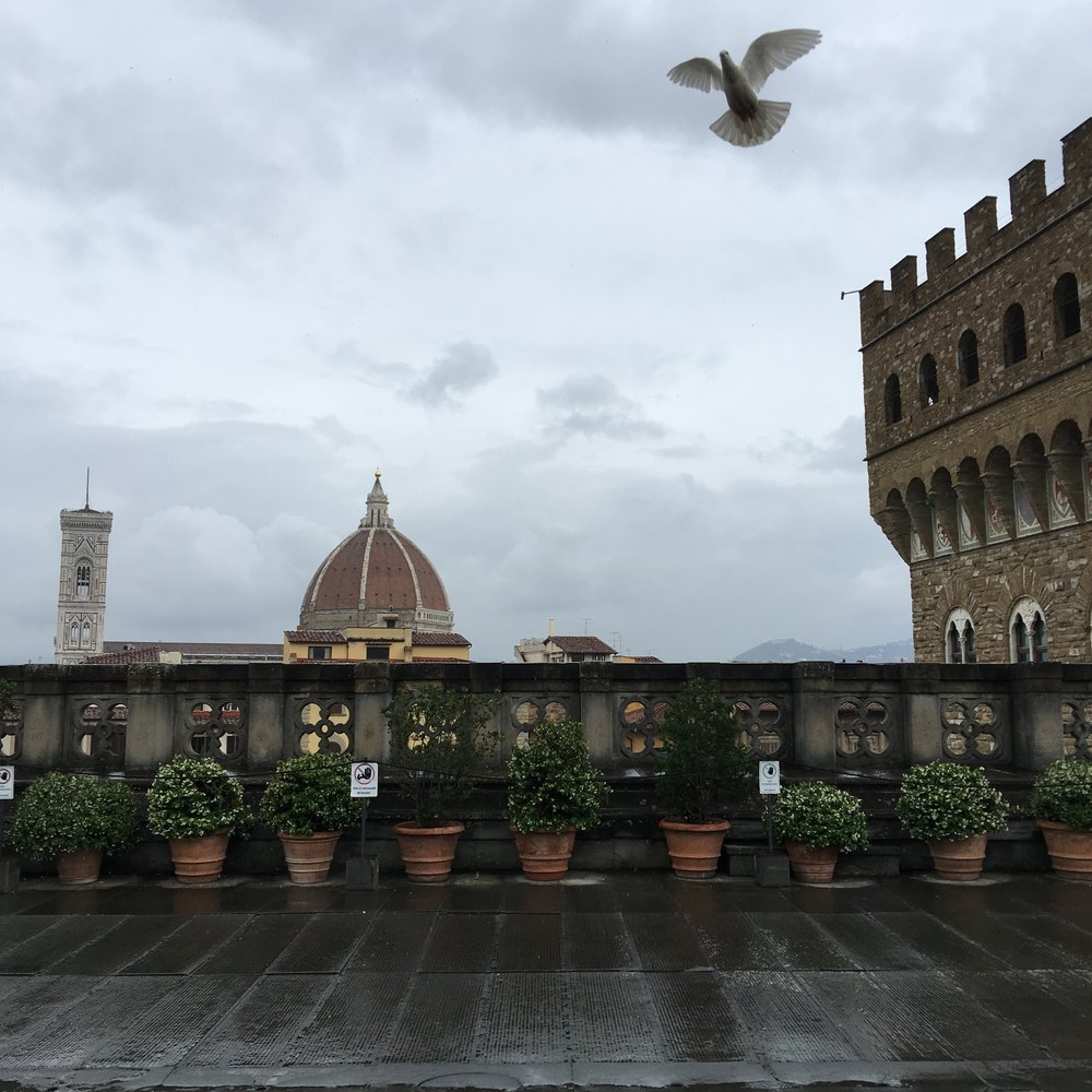 Brunelleschi's dome over the Florence Cathedral from the balcony of the Uffizi Gallery. Photo by Kate Lenahan.