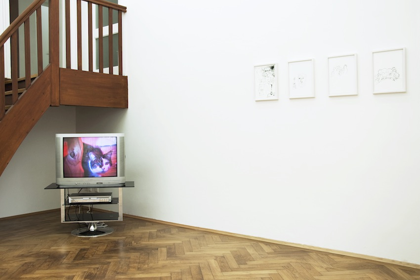 LATENT FICTION installation view: Joseph Walsh - Ulrich Hakel