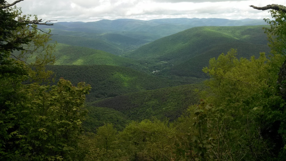 The Heart of the Catskill State Park as seen from the Summit of Balsam Mountain