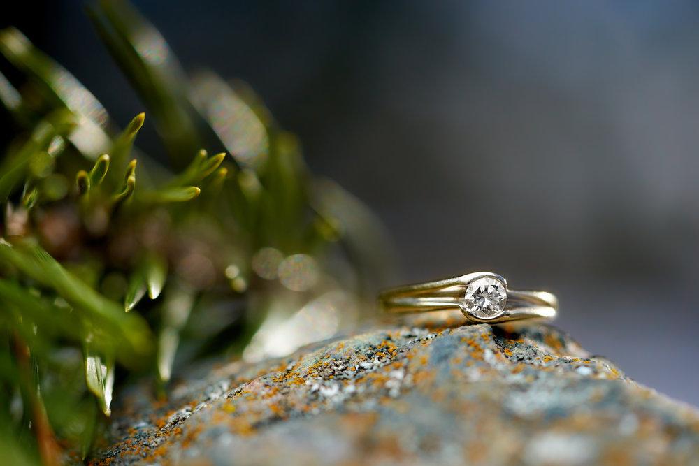 Roxanne & Derek Engagement 044.jpg