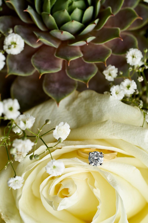 Maeghan & Phil's Wedding 013.jpg