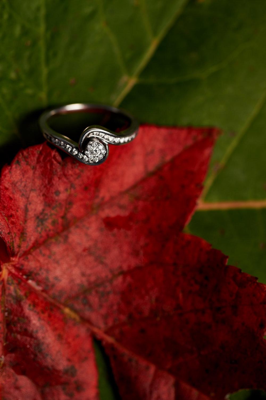 Jessica & Devin's Engagement 048.jpg