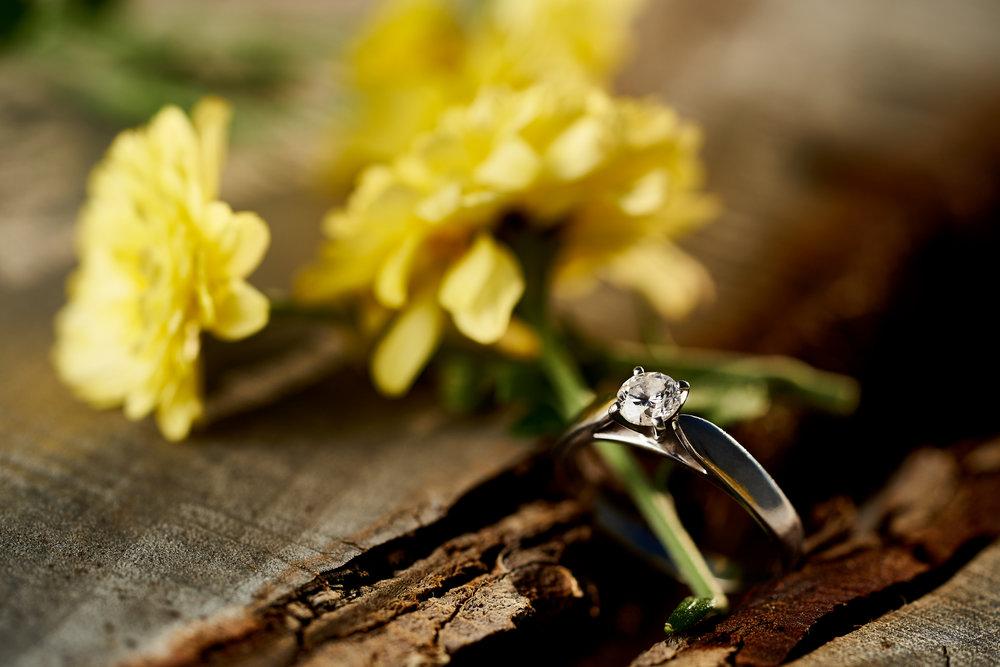 Teagan & Phil's Engagement 020.jpg