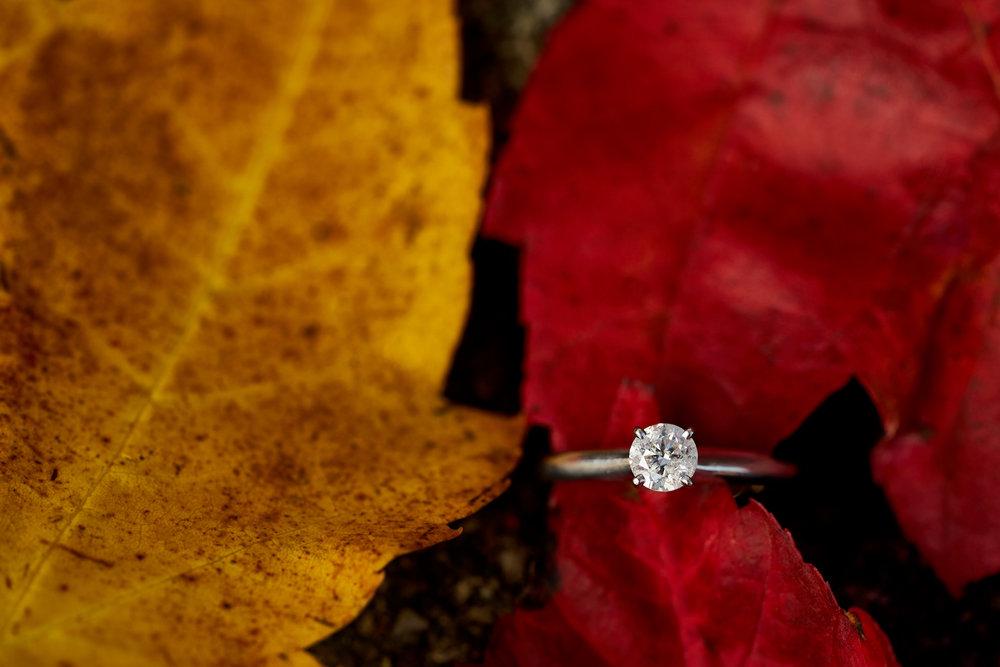 Courteney & Travis' Engagement 076.jpg