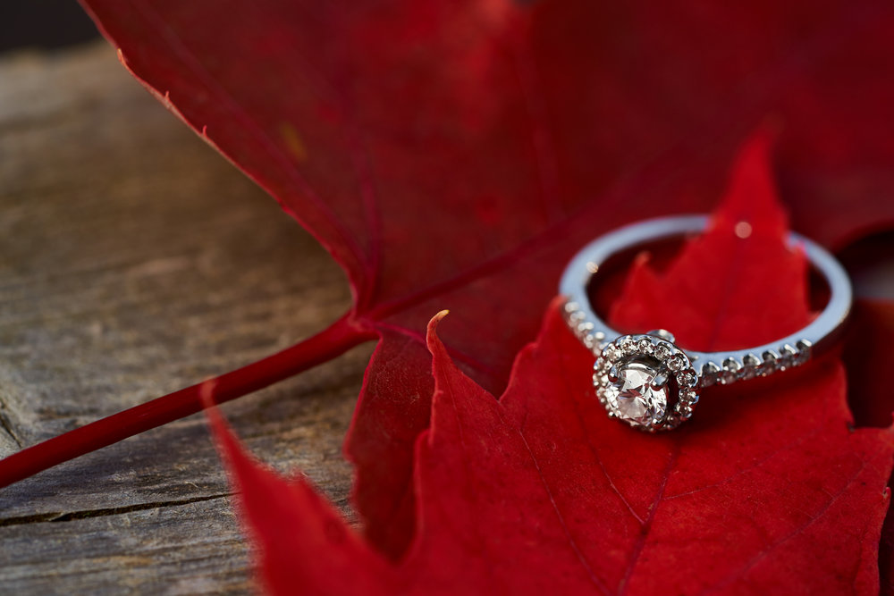 Danica & Jeremie's Engagement 071.jpg