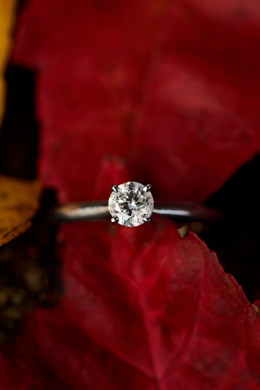 Courteney & Travis' Engagement 079.jpg
