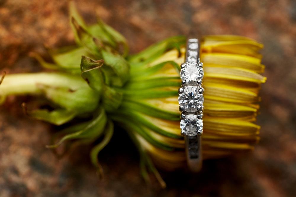 Sophie & Marc's Engagement - 051.jpg