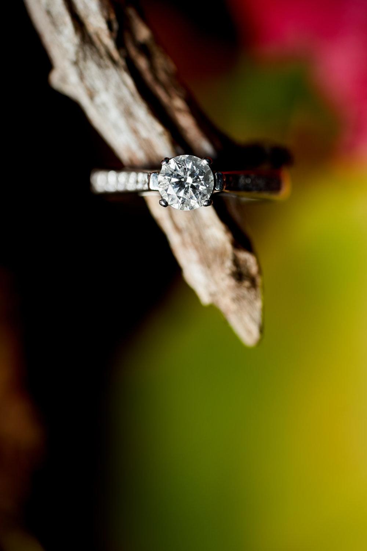 Arielle & Brad's Engagement - 084.jpg