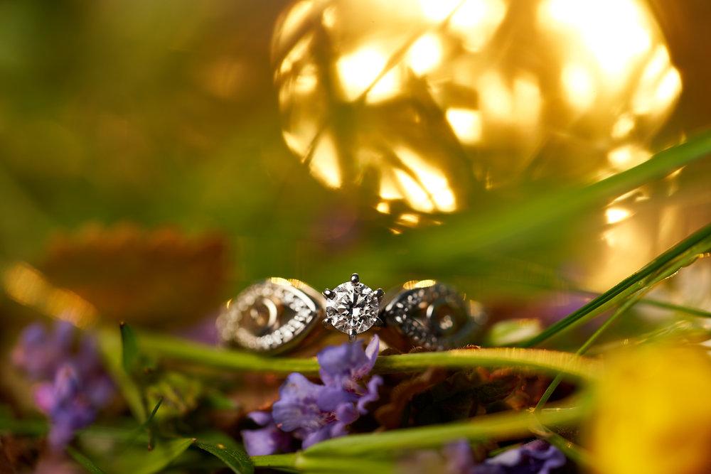 Rianne & Scott's Engagement - 143.jpg