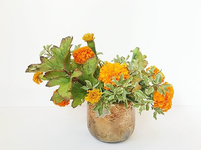 Keeping it simple. . . . #flowerseveryday #celebrate #floraldesign #floralarrangement #centerpieces #floraldecor #autumn🍁 #fallfoliage #marigolds #flowers #laflorist #imaflorist #losangelesflorist