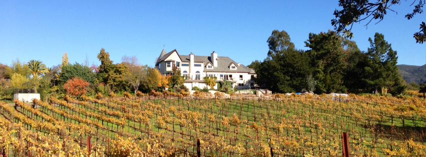 ROQUE_Events_Knoll_Top_Vineyards_5.jpg