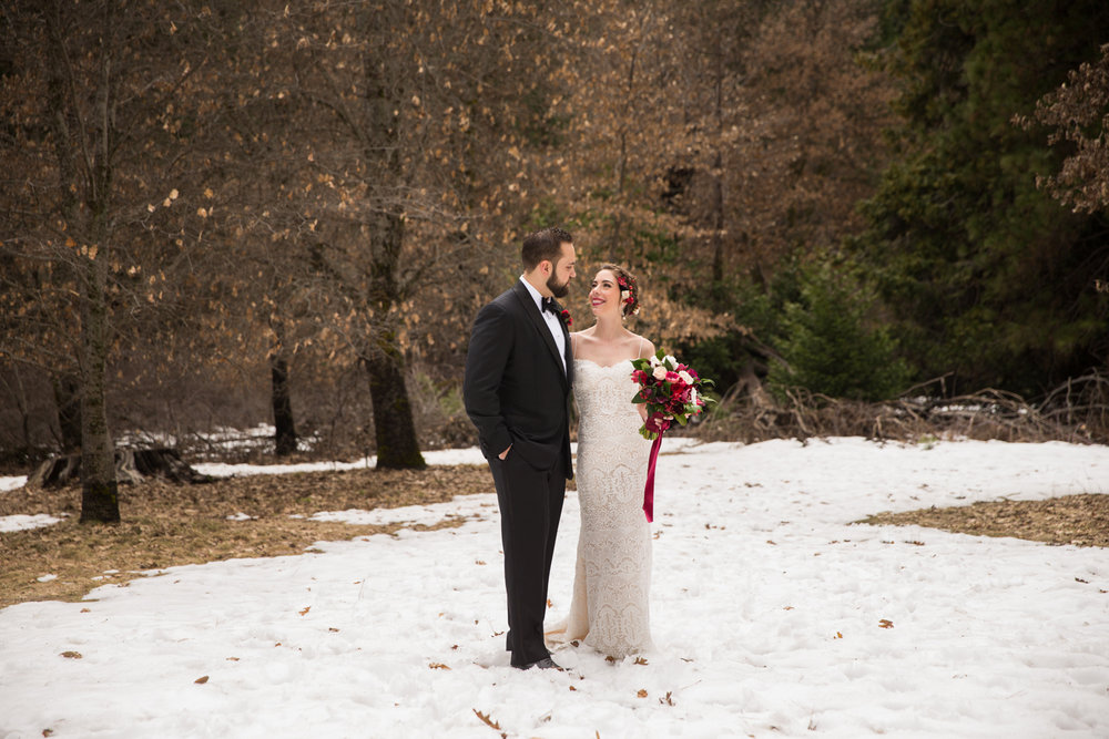 roque_events_yosemite_wedding_bogdan_condor81.jpg