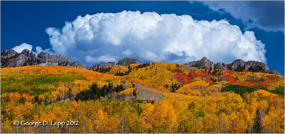 Fall colors at Kebler Pass in Colorado L-CO-KE-0007