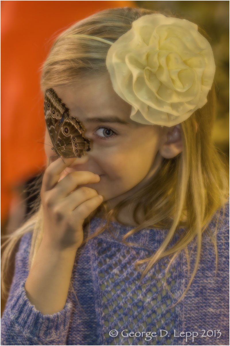 Jolie with butterfly, 2013. UP-RF-JO-0006