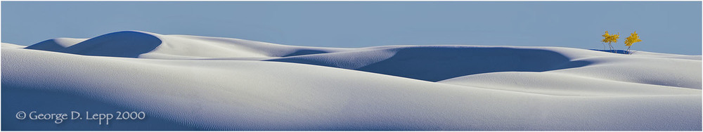 White Sands and yellow cottonwood, New Mexico. © George D. Lepp 2000  L-NM-WH-0005