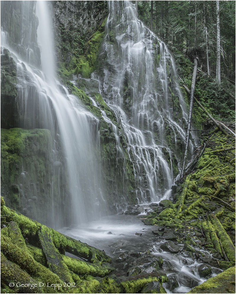 Lower Proxy Falls, Cascades, Oregon © George D. Lepp 2012  LO-WF-PR-0005