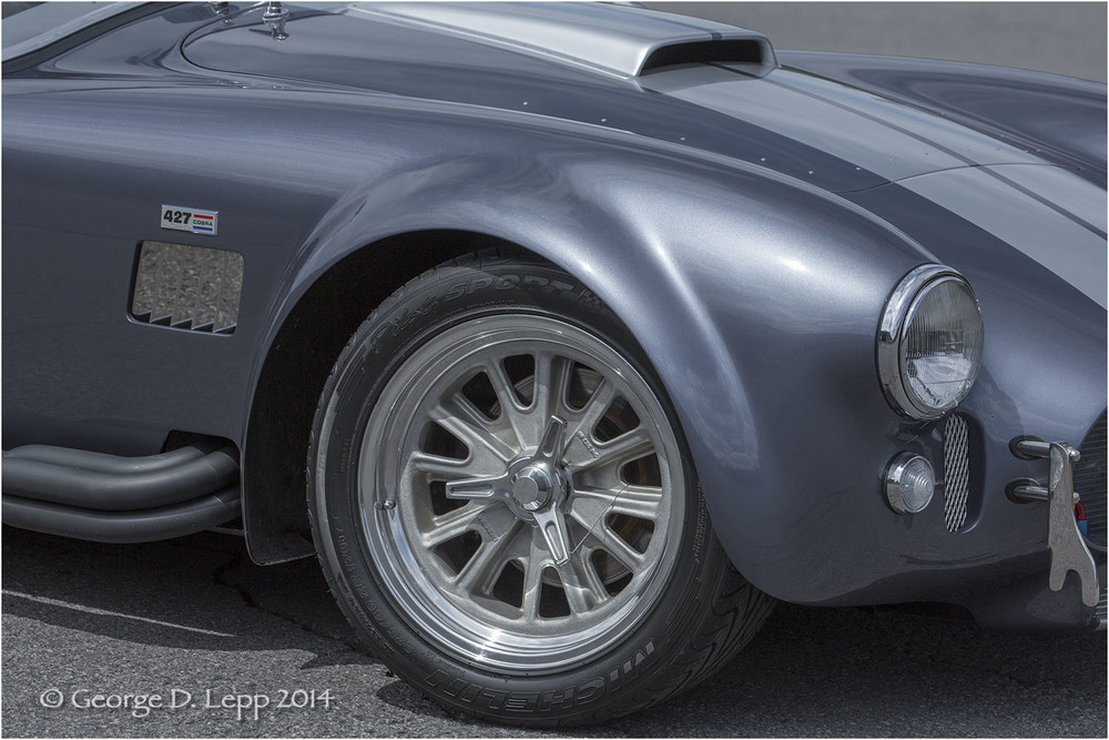 Ford Cobra Replica, © George D. Lepp 2014  T-CA-SP-4004