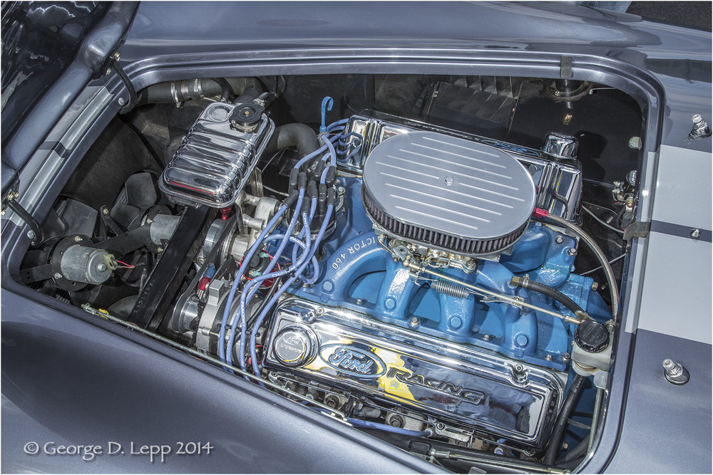 Ford Cobra Replica, © George D. Lepp 2014  T-CA-SP-4009