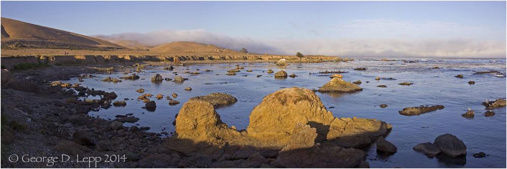 Estero Bay State Park, CA. © George D. Lepp 2014 LC-CC-CB-0004