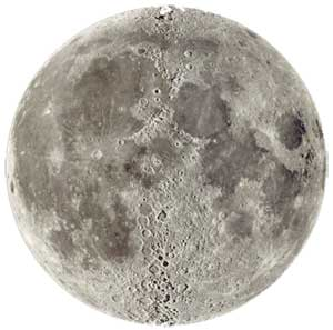 Full Moon In Cancer Wellness. — The Hoodwitch