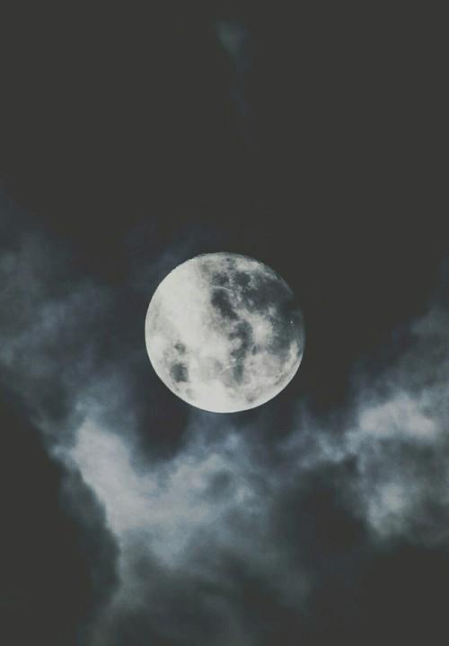 Full Moon In Virgo Wellness